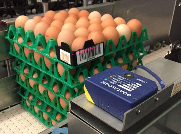 Traceerbaarheid pluimveehouder consument