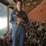 Estudo de caso: Ovotrack na Wilcox Farms, USA